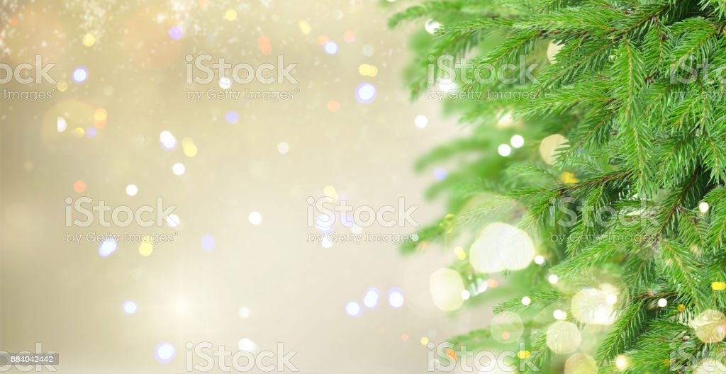 with fir tree and snow stock photo