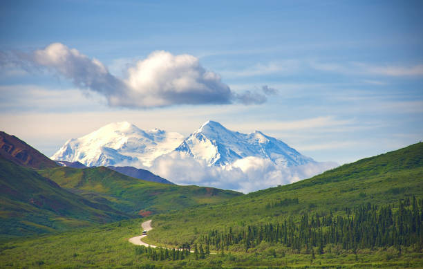 With its huge mountains and surrounded by a wonderful biodiversity lies the Denali National Park and Preserve. Touristic route and cloud sky. Landscape, fine art. Parks Hwy, Alaska, EUA: July 28, 2018 stock photo