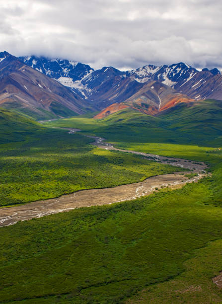 With its huge mountains and surrounded by a wonderful biodiversity lies the Denali National Park and Preserve. River, trees and cloud sky. Landscape, fine art. Parks Hwy, Alaska, EUA: July 28, 2018 stock photo