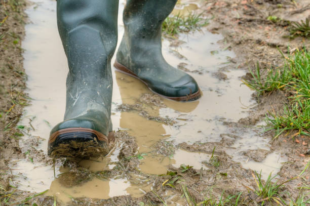 With rubber boots through the mud. stock photo