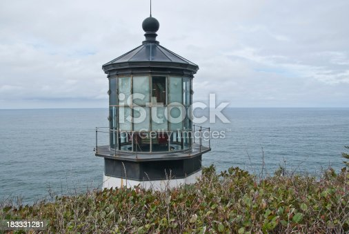 With the advent of radar, GPS and other advanced navigation tools, lighthouses no longer need to perform the same function they once did; guiding ships to safety. Instead they have been preserved as historic monuments; reminding us of a time when shipping and sailing were more perilous activities. The Cape Meares Lighthouse is located at Cape Meares State Park near Tillamook, Oregon, USA.