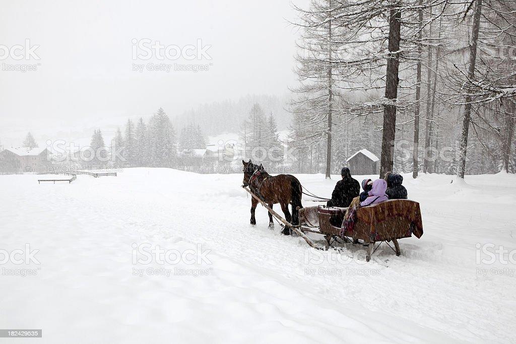 With the sleigh through winter wonderland stock photo