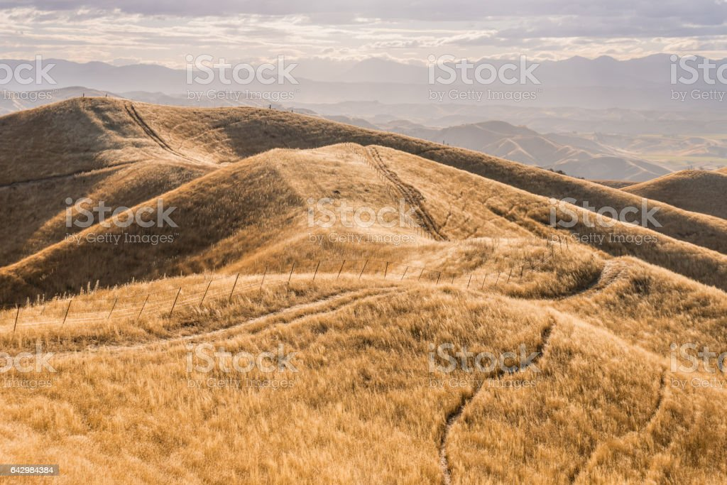 Wither Hills, New Zealand stock photo