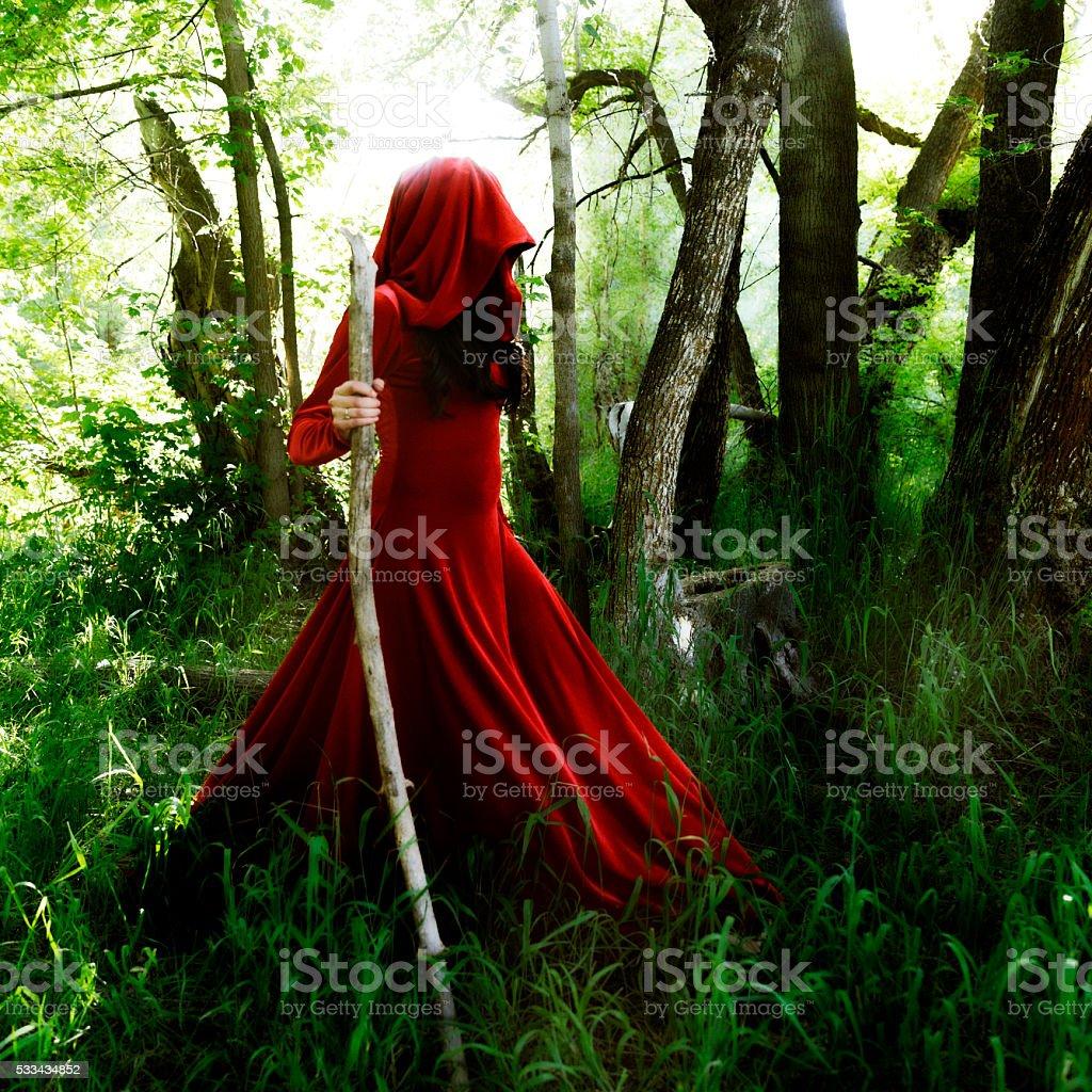 Wizard walking in Forrest stock photo
