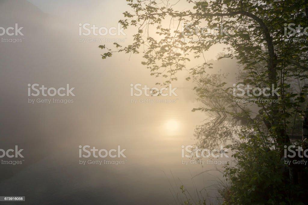 Wocheiner See photo libre de droits