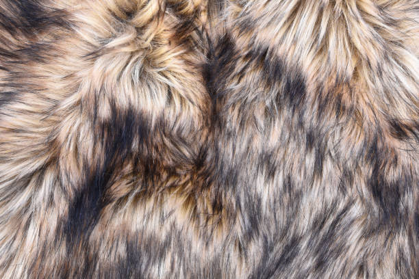 Wolf faux fur texture stock photo