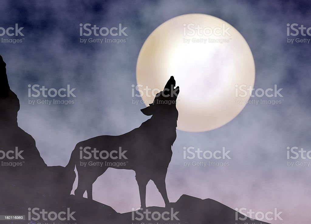 Wolf Howling at Moonlight stock photo