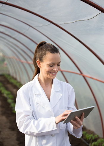 istock Woman agronomist with tablet in greenhouse 966275988