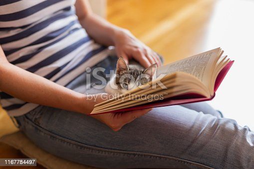 istock Woman and a cat reading a book 1167784497