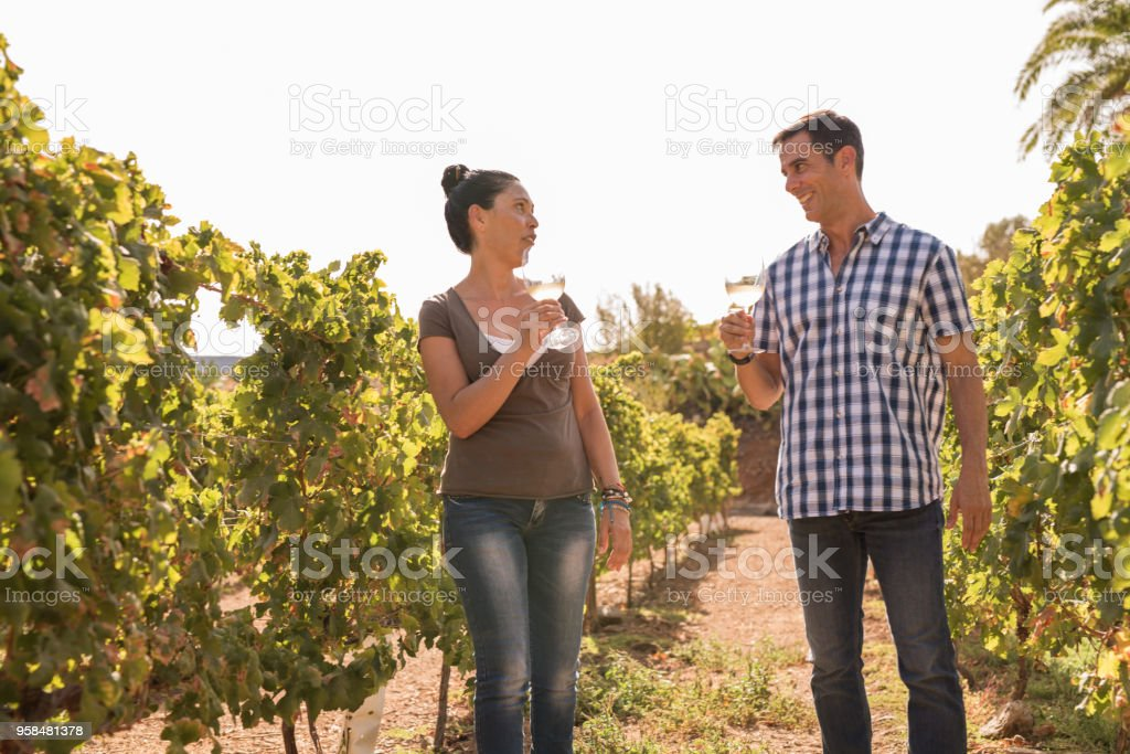 A woman and a man drinking wine in the vineyard stock photo
