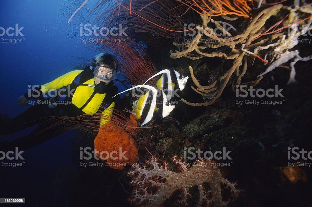 Woman and Bannerfish stock photo