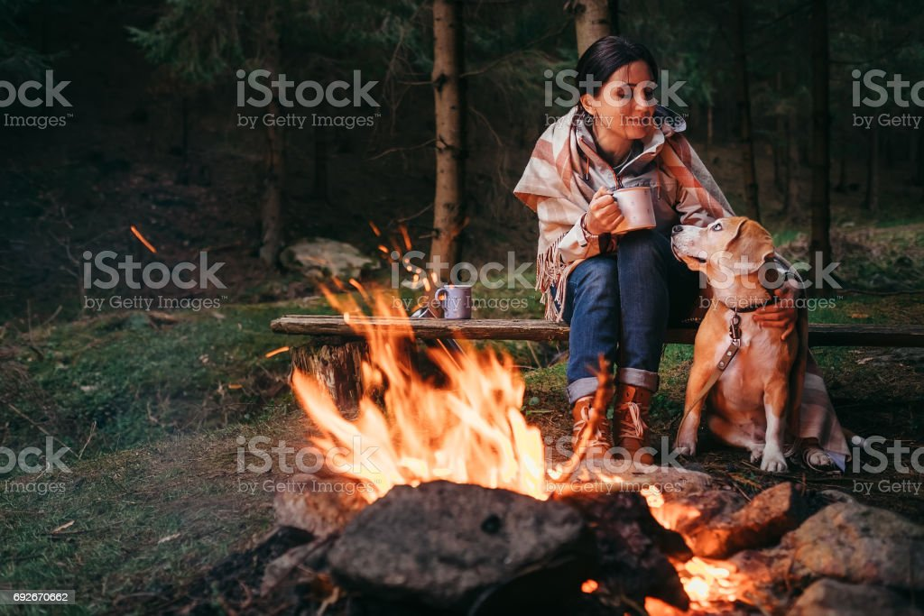 Woman and beagle dog warm near the campfire stock photo