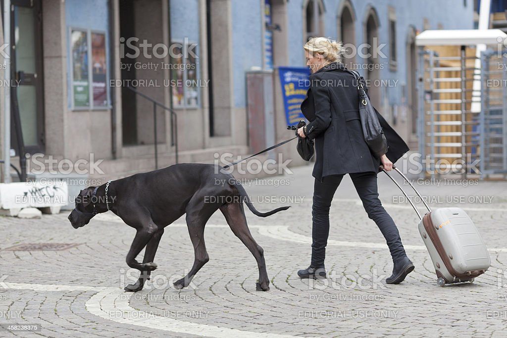 Woman and big dog in black stock photo