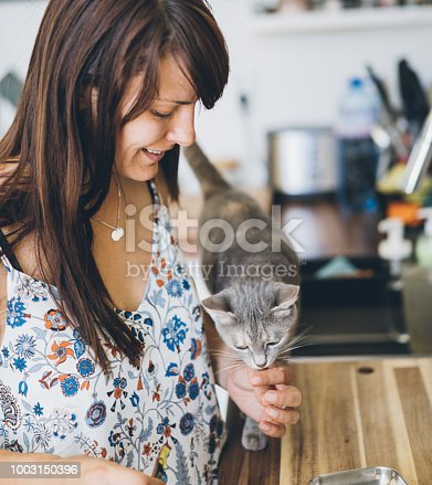 Beautiful woman preparing food for her domestic cat at the kitchen