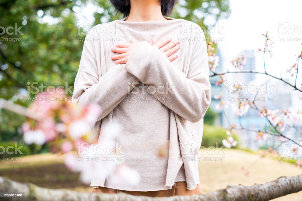 Woman and cherry blossom stock photo