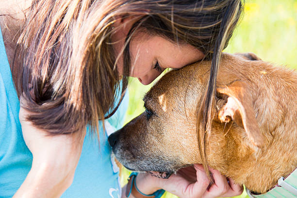 woman and dog console each other stock photo