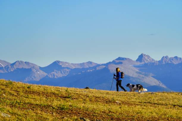 Woman and Dog Hiking Along Ridge with Stunning Mountain Views stock photo