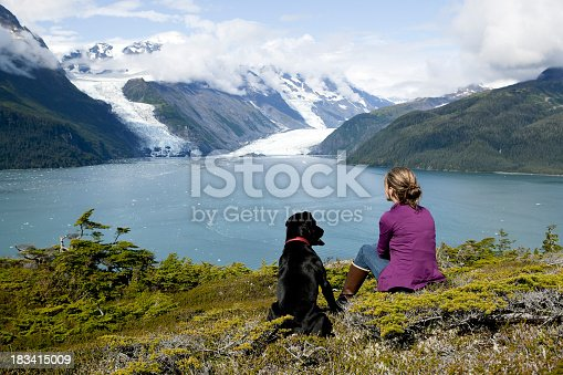 istock Woman and dog looking at landscape in Alaska 183415009