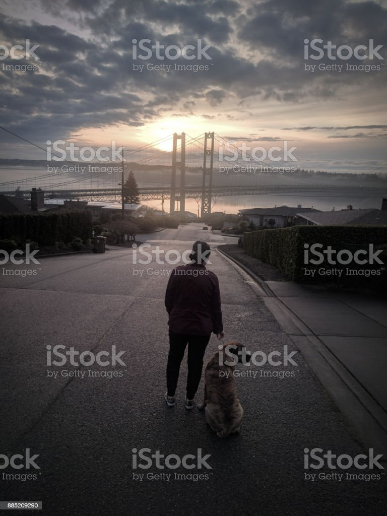 Woman and dog stock photo