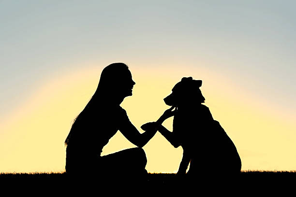Woman and dog shaking hands sunset silhouette picture id516548187?b=1&k=6&m=516548187&s=612x612&w=0&h=cuac7sezzilczg5984opofz89sb42rtzf1f1yr9pl9k=