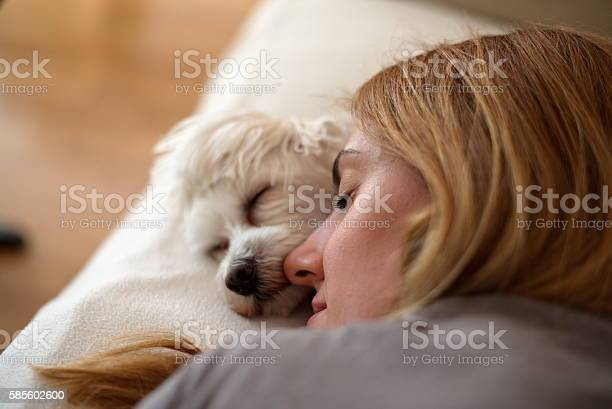 Woman and dog sleeping together picture id585602600?b=1&k=6&m=585602600&s=612x612&h=dxjbxgxjm9qr ec3jxqcbwsi59bxostlftdlsaadh40=