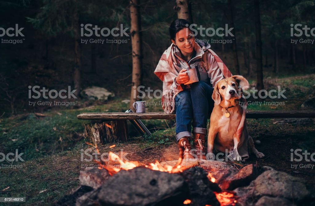 Woman and dog warm near campfire in forest stock photo