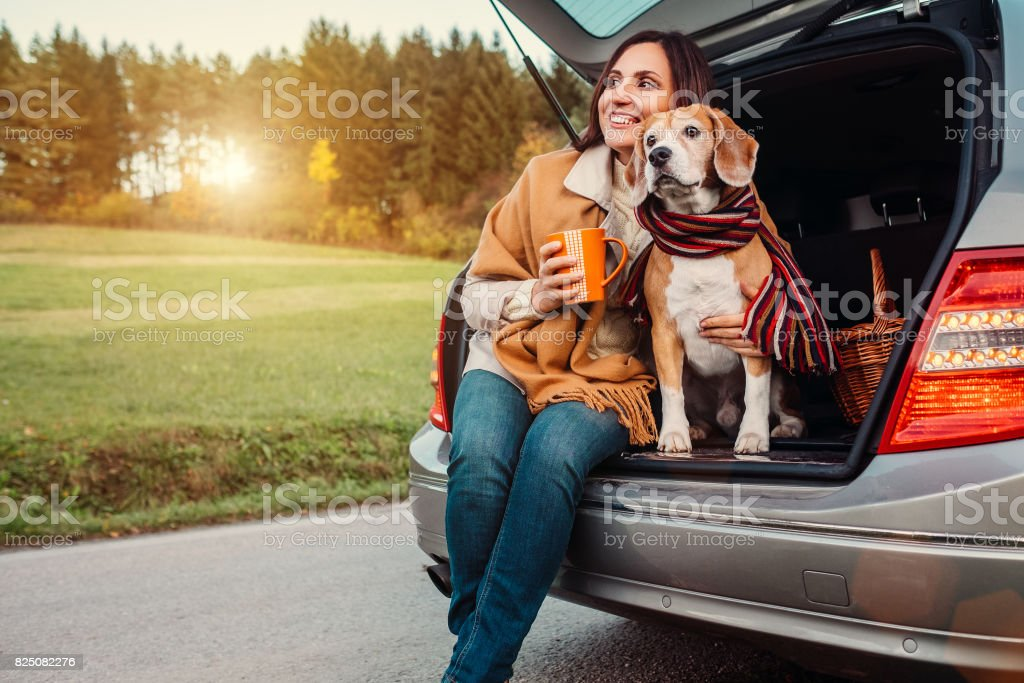 Woman and dog with shawls sits together in car trunk  on autumn road stock photo