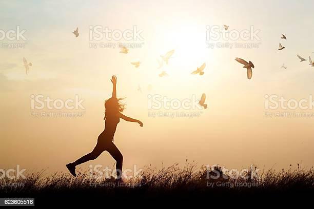 Woman and flying birds enjoying life in sunset background picture id623605516?b=1&k=6&m=623605516&s=612x612&h=ehedvxan7y aevnm28u8o5vmljrex2pr yzno2zj6f0=