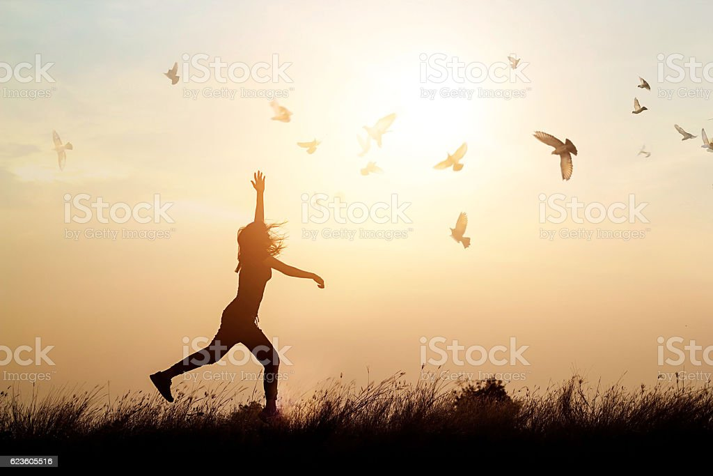 Woman and flying birds enjoying life in sunset background stock photo