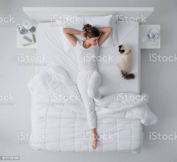 Woman and her cat in the bedroom picture id912723150?b=1&k=6&m=912723150&s=612x612&h=bv5p7netsqac ulaql0ig8weruqhhtmwuykuw8yz4cq=
