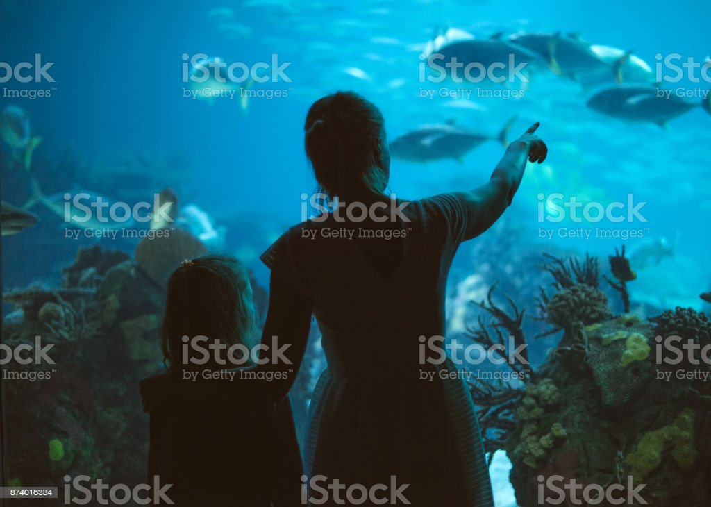 Woman and her daughter in the aquarium. stock photo