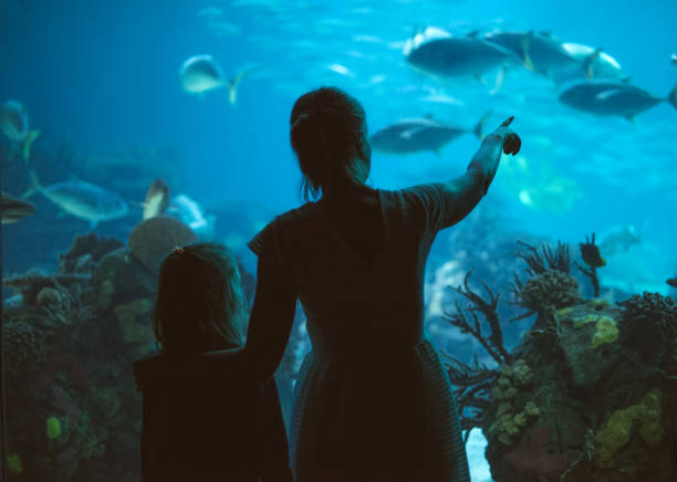 Woman and her daughter in the aquarium. Woman and her daughter in the aquarium. aquarium stock pictures, royalty-free photos & images