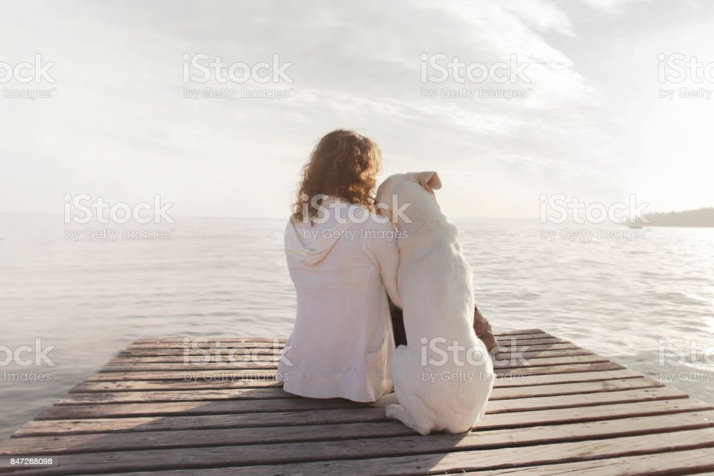 woman and  her dog admire together the scenery stock photo