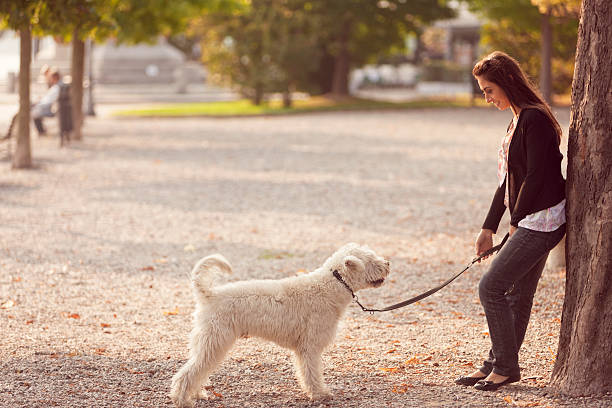 Woman and her dog in a park stock photo