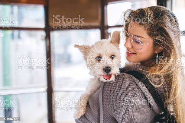 Woman and her dog in tram picture id901697652?b=1&k=6&m=901697652&s=612x612&h=j3jtotzbjknltrkq ryzslo1wmvj acvqfuh5pogbqw=