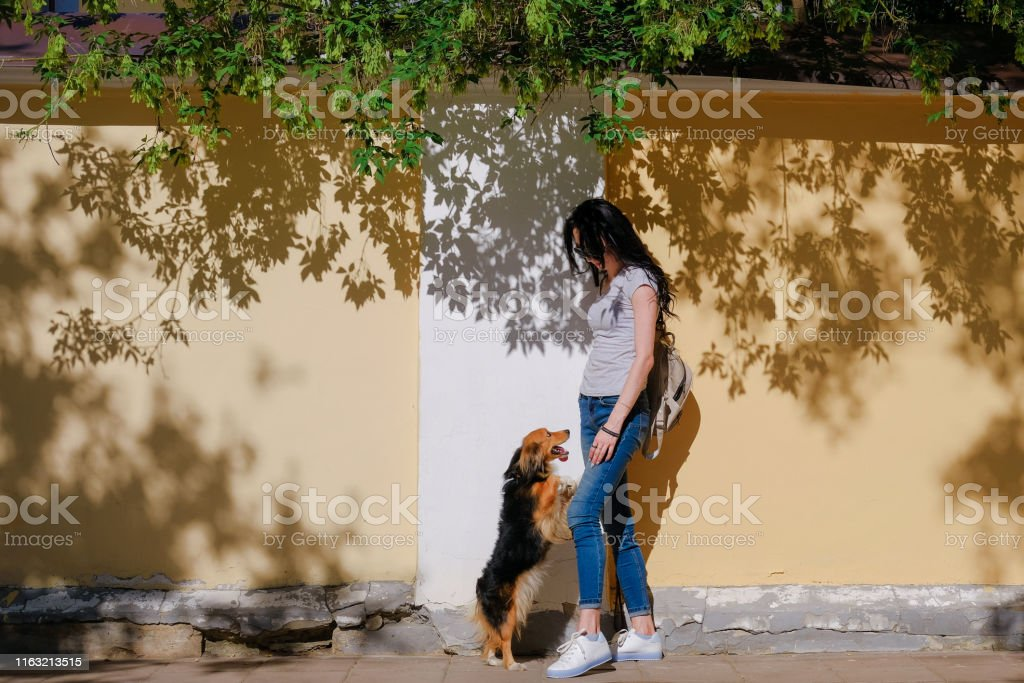 Woman and her dog on background of wall with contrast shadows. Funny...