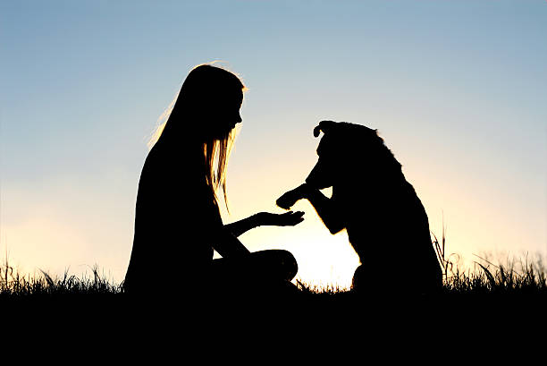 Woman and her dog shaking hands silhouette picture id470696562?b=1&k=6&m=470696562&s=612x612&w=0&h=bb78elgzee8oas2rht7ng 49kjpmoa7seqbsjsjj bs=