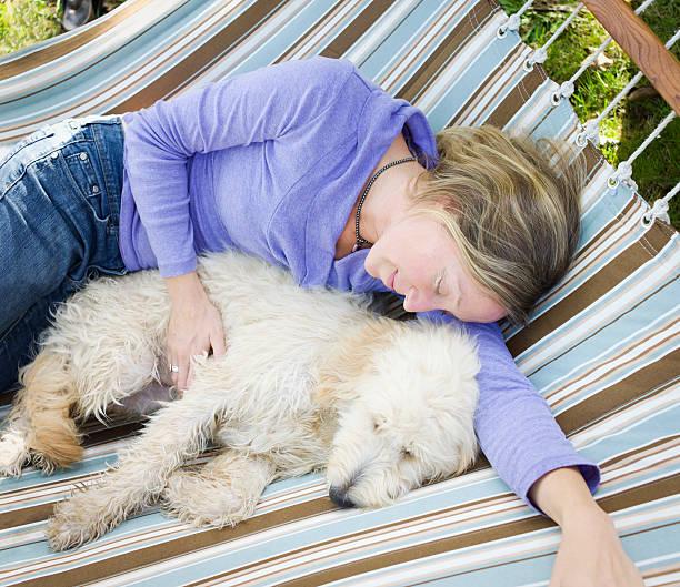 frau und ihrem hund schlafen in einer hängematte. - hundeplätze stock-fotos und bilder