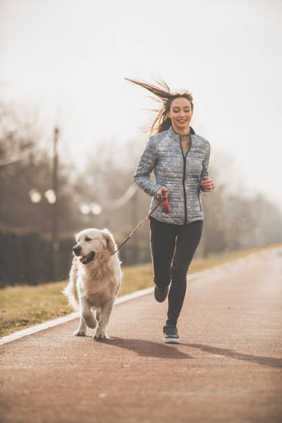 woman and her dog training together - young woman running city imagens e fotografias de stock