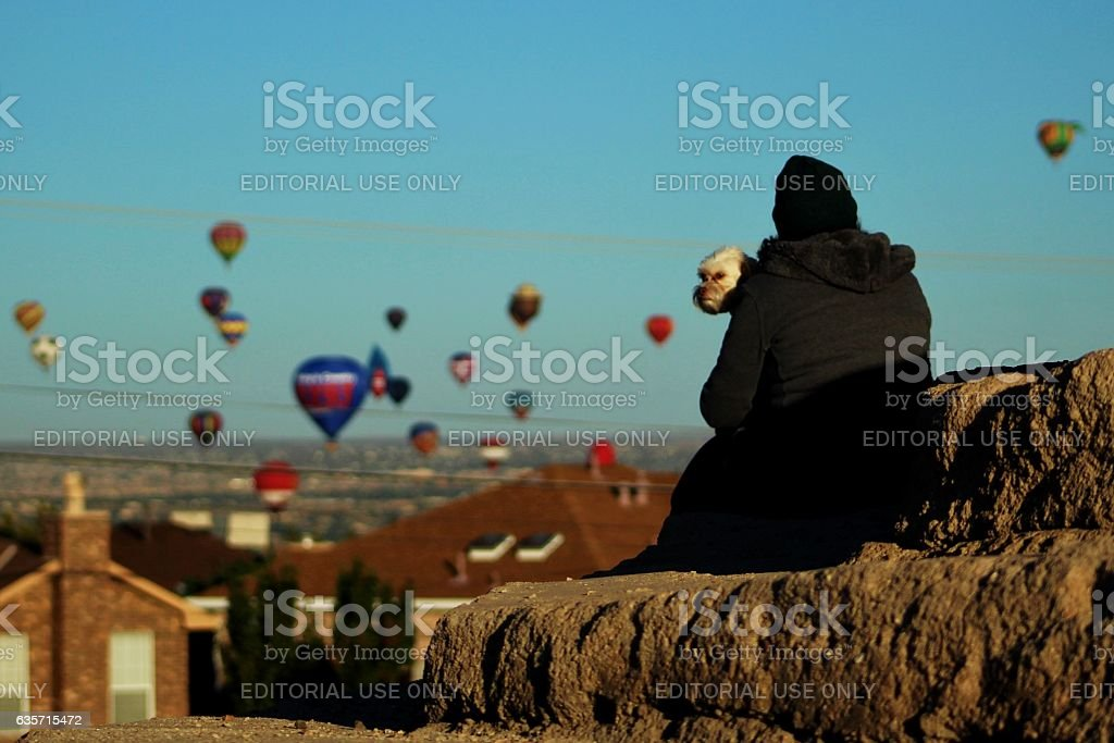 Woman and her dog watch hot air balloons royalty-free stock photo
