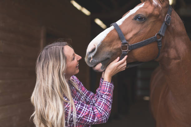 A Woman and Her Horse stock photo