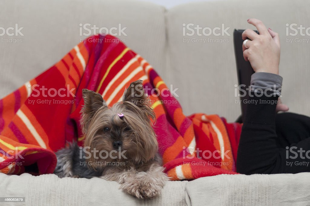 woman and her lovely dog royalty-free stock photo