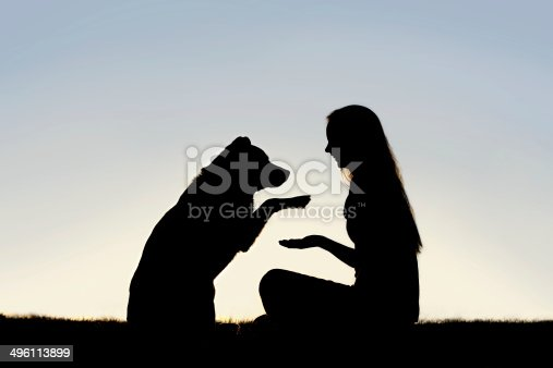 istock Woman and Her Pet Dog Outside Shaking Hands Silhouette 496113899
