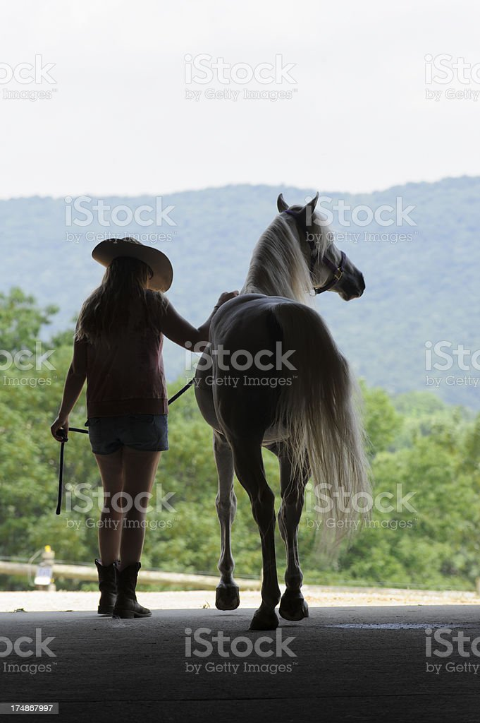 Woman and Horse Silhouette Open Summer Barn Door, Rear View stock photo