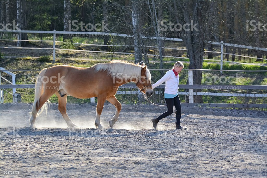 Woman and horse walking stock photo