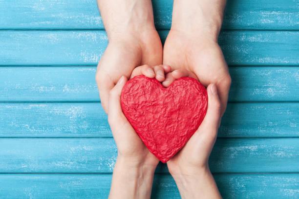 Mains de femme et homme tenant rouge forme de coeur. Fond de jour de la Saint-Valentin. Notion de relation, famille et pratiques d'action humanitaire. - Photo