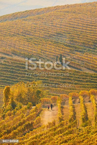istock Woman and man walking in a vineyard path in autumn with yellow leaves in a sunny day in Italy 940194948
