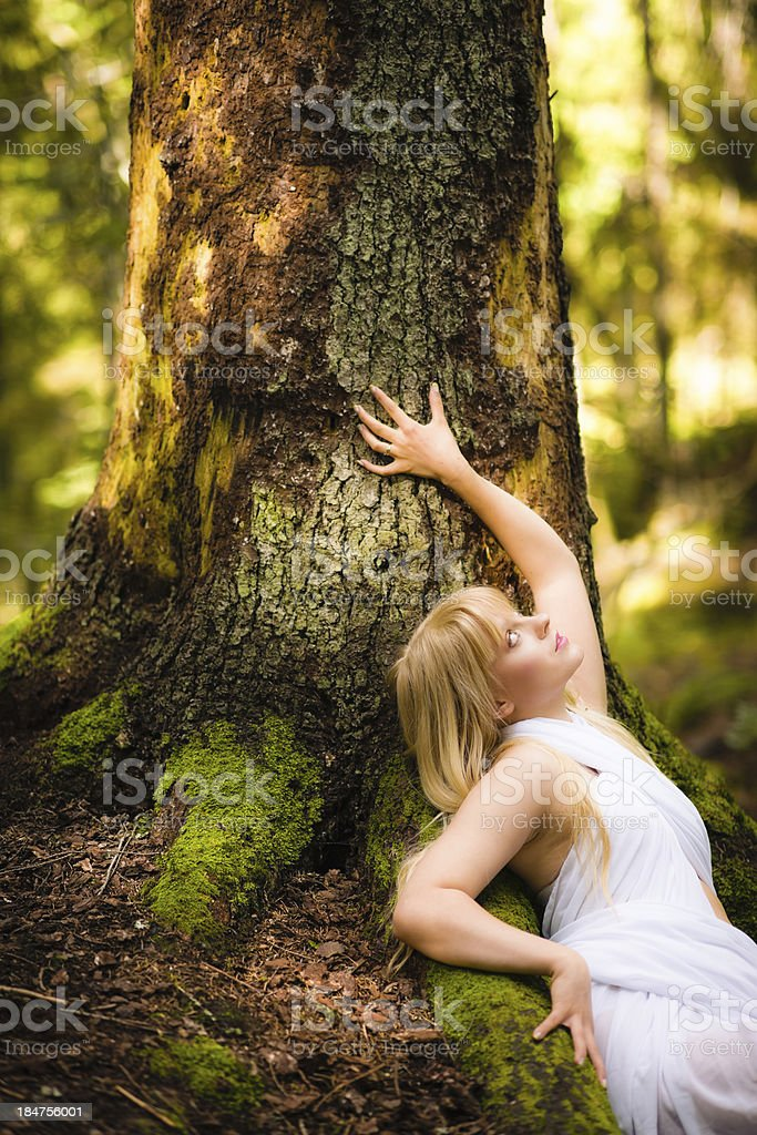 Woman and old spruce royalty-free stock photo