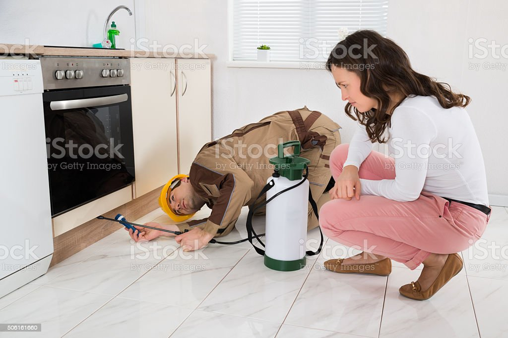 Woman And Worker With Pesticide Sprayer stock photo
