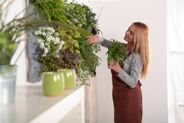 Frau, arrangieren ihre grüne Wand – Foto
